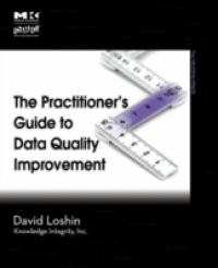 Practitioner's Guide to Data Quality Improvement