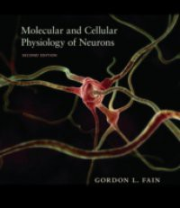 Molecular and Cellular Physiology of Neurons, Second Edition